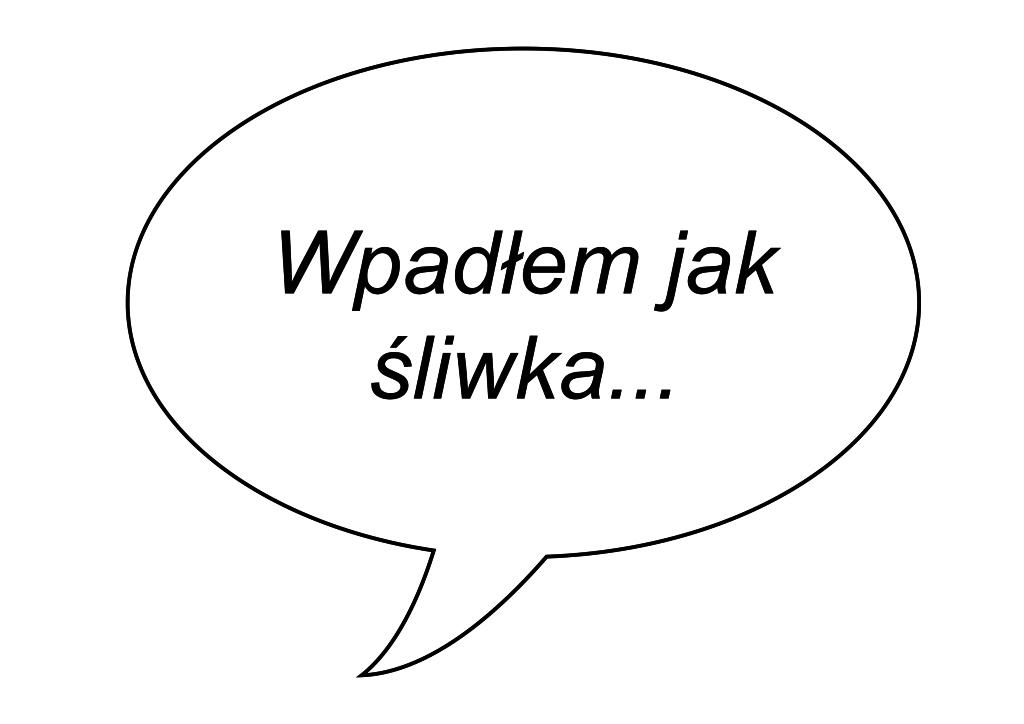 sliwka1